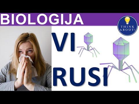 virusi biologija 5 razred viermi pentru bebeluși