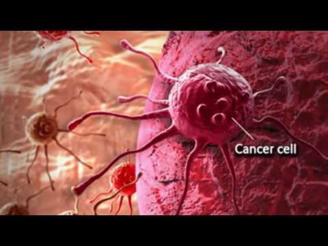 giardia muris virus hpv chez l homme traitement
