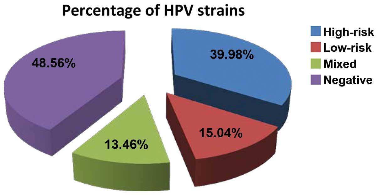 hpv high risk strains