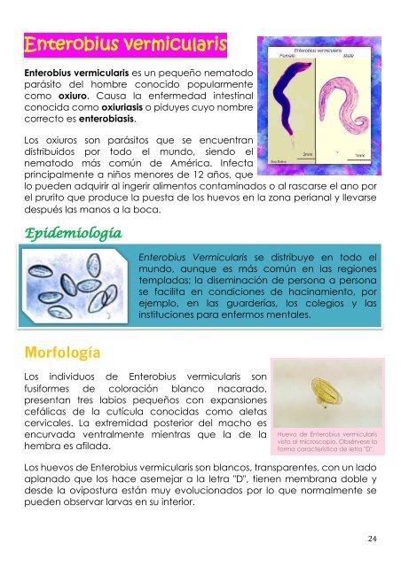 tratamiento oxiuros ce înseamnă virusul papiloma