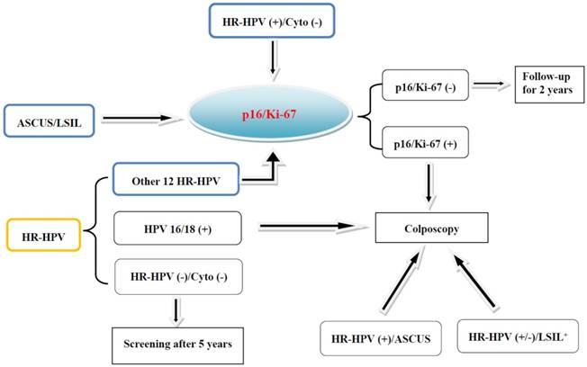 human papillomavirus p16 expression