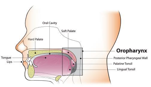 hpv bumps treatment oncocytic papilloma sinus