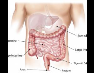 cum se tratează papilomele pe gât