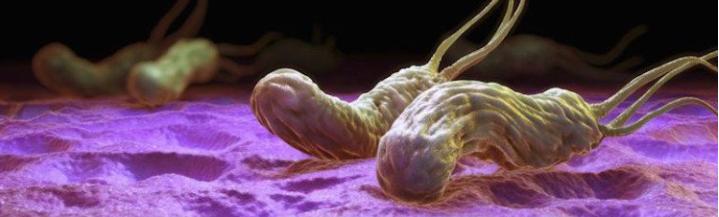 droguri helmintice paraziți cu celule de dormit