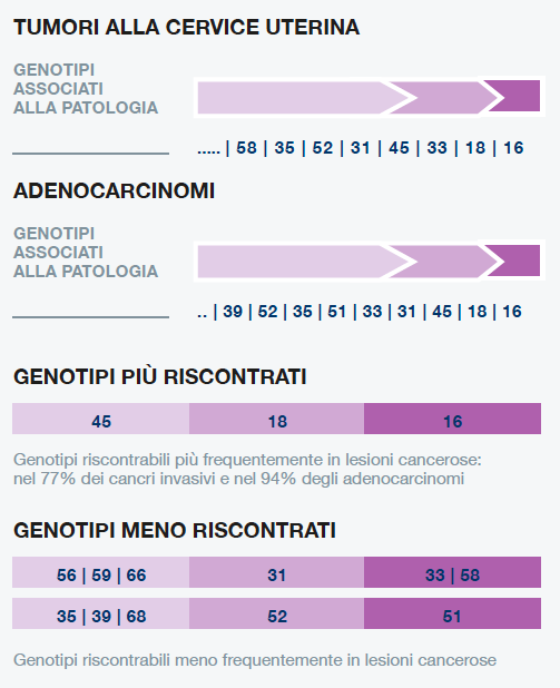 papilloma virus analisi traitement masculin papillomavirus