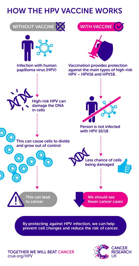 papillomavirus and infection control