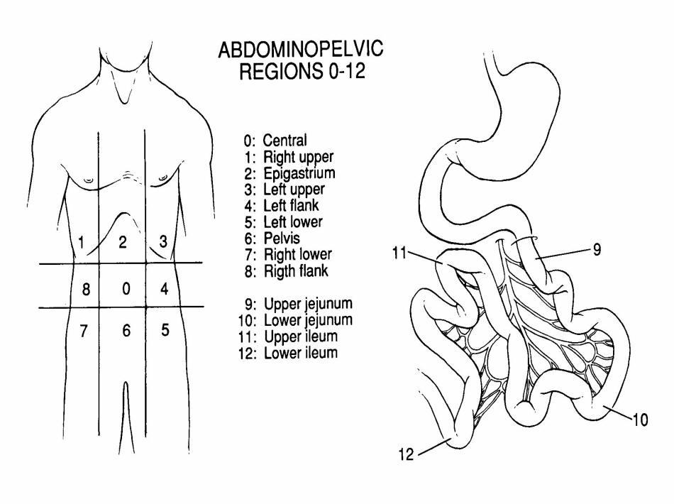 Cancer peritoneal pronostico