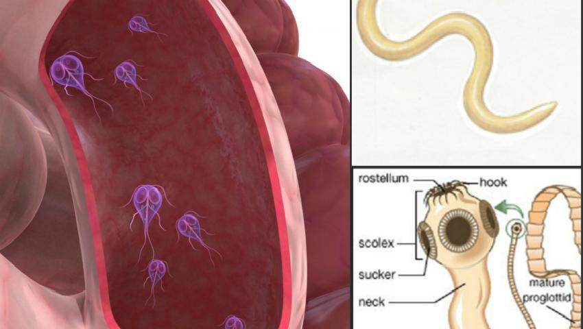 hpv hr meaning îndepărtarea verucilor genitale înainte și după