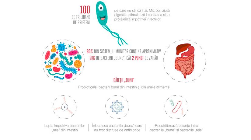 bacterii digestive dieta de curățare a paraziților