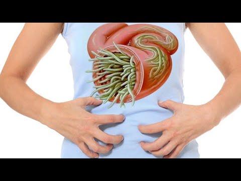 pastile de vierme la viermi adulți cura pentru ficat marit