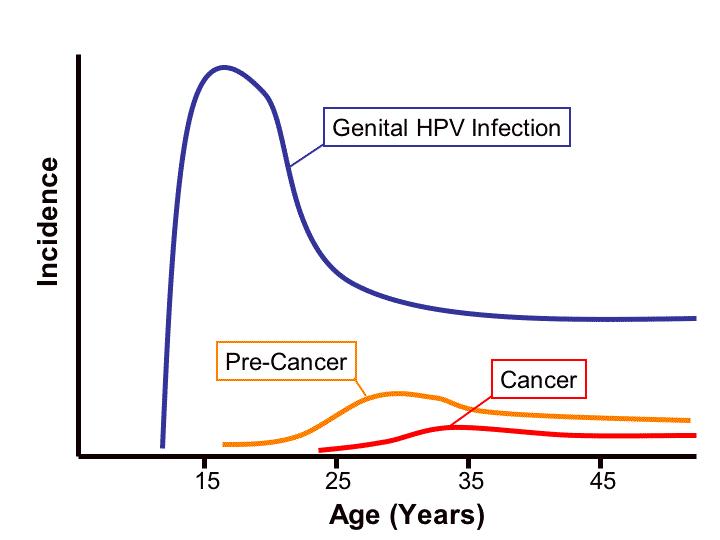 genital hpv infection cancer simptome ale infecției cu vierme la copii