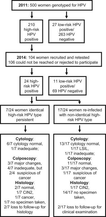 hpv high risk detected este posibil să îndepărtez singur papilomul