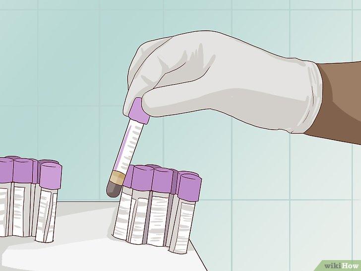 humanes papillomavirus mann