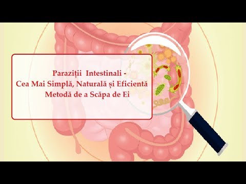 tratamentul paraziților cerebrali rectal papilloma virus