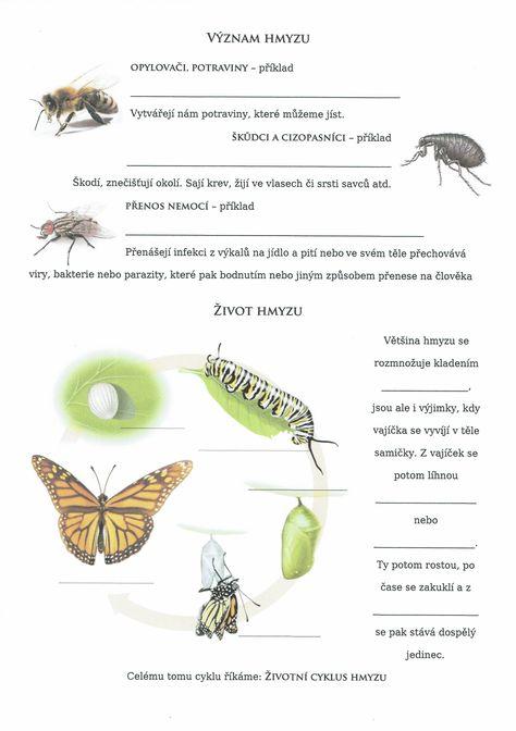 paraziti hmyzu împotriva cernagilisului în mod natural