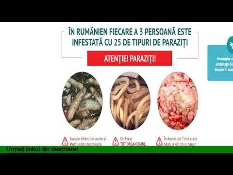 cum să elimini parazitul din organism)