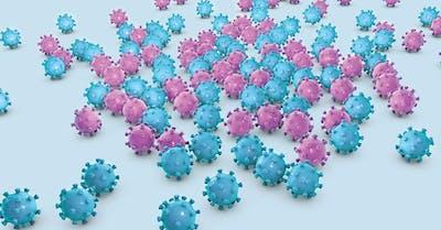il papilloma virus lo trasmette l uomo