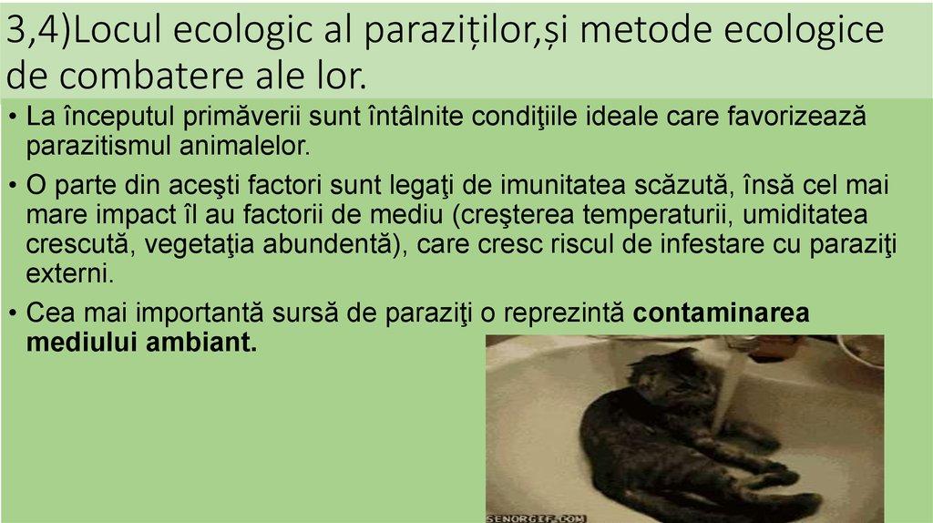 Metode de tratament pentru varice