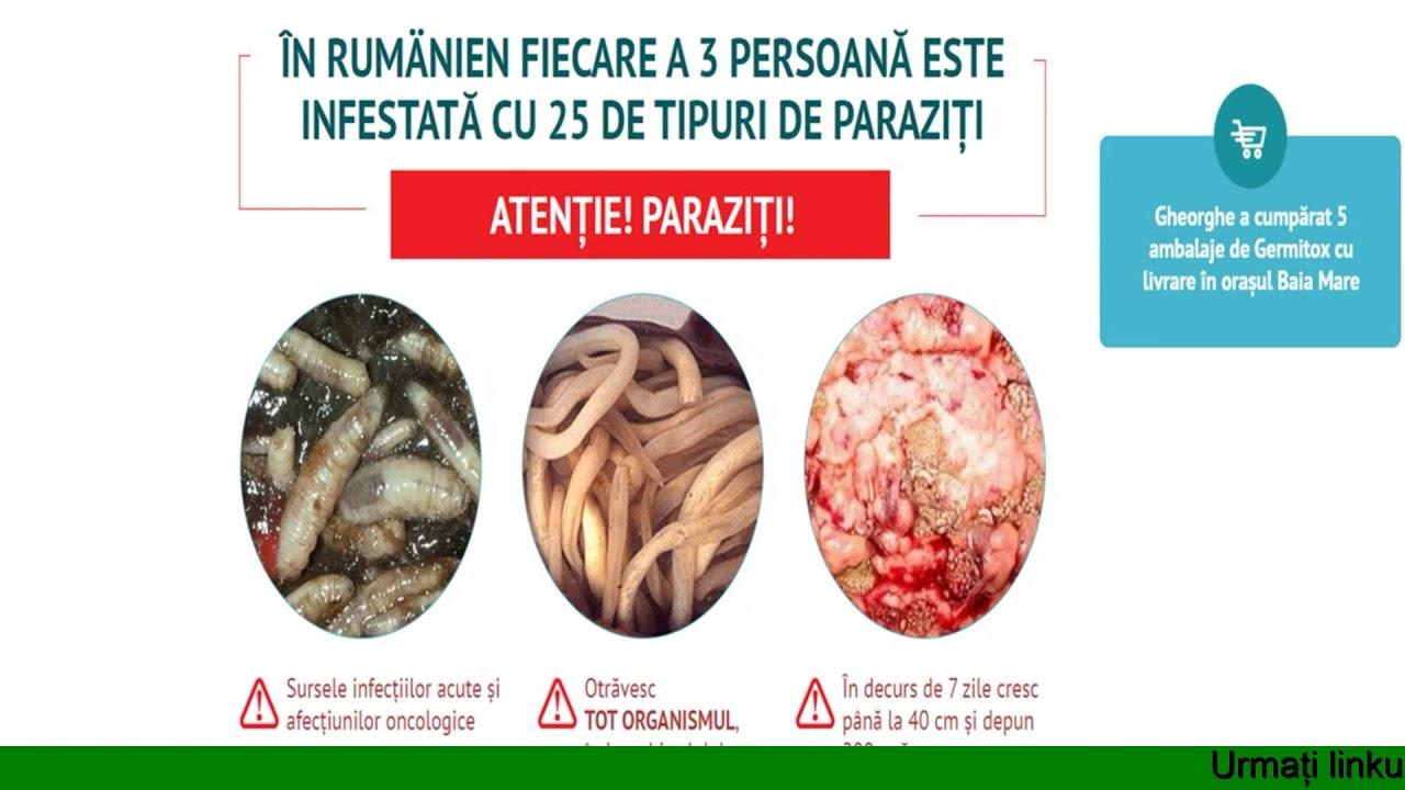 paraziti zoonotici ppt