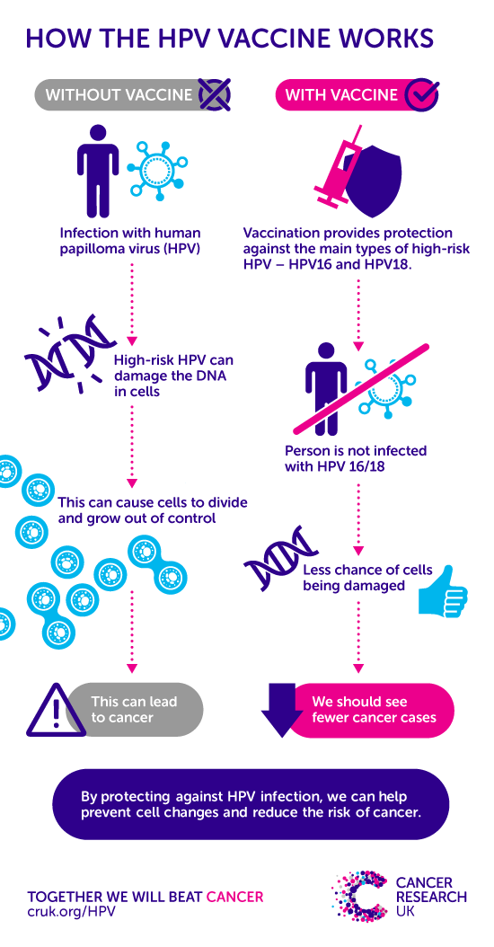 papillomavirus cause