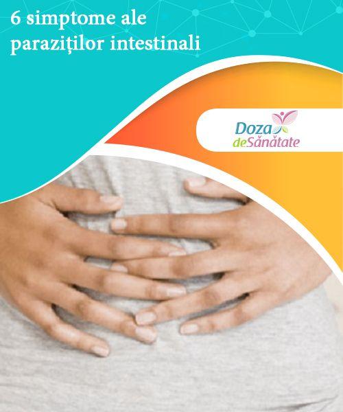 Parazitozele intestinale: giardioza si ascaridioza   parcareotopeni24.ro